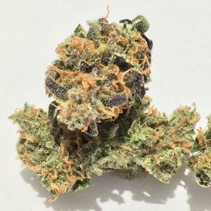 Costa Mesa Marijuana Delivery Today | ORGANIC OC